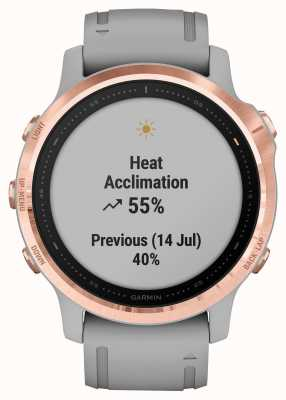 Garmin Fenix 6s pro saphir | ton or rose | sangle gris poudre 010-02159-21